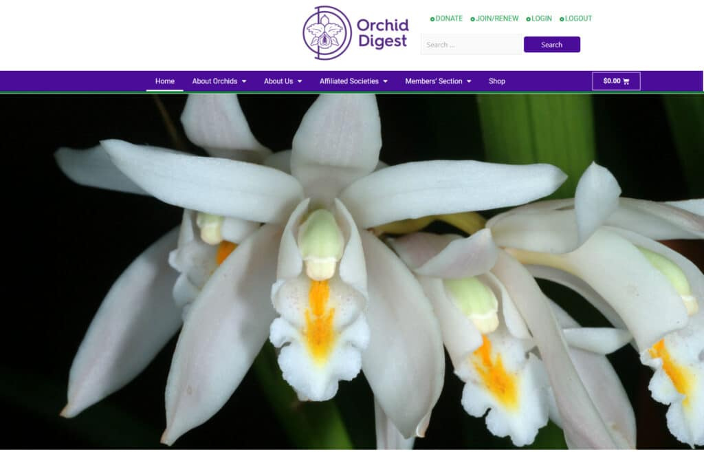 Orchid Digest Magazine website developer